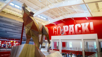 Photograph of the geometric wolf inside Reynolds Coliseum at NC State.